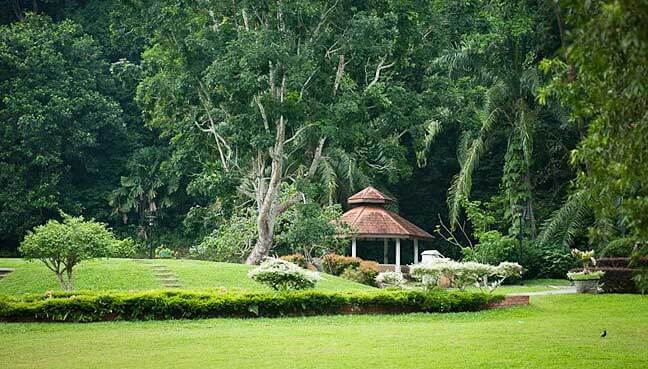Penang Botanic Garden landscape view park Parks and Nature Attractions in Penang botanic garden 4